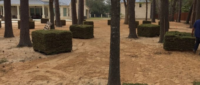 Grass Pallets Staged for Installation